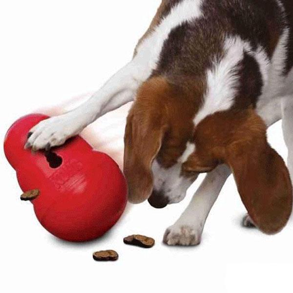 Aktiveringslegetøj til hund