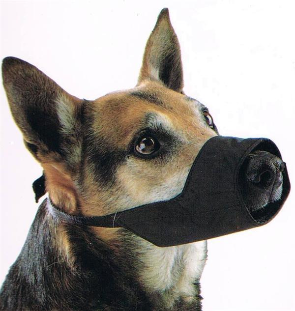 Mundkurv til hund