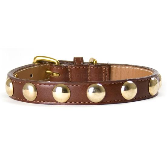 Image of   Hundehalsbånd i læder med guldnitter