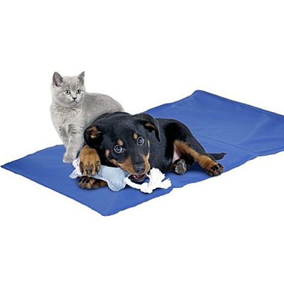 Fresk hundekøle tæppe