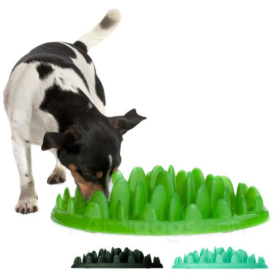 Billede af Green Slow Eating hundeskål