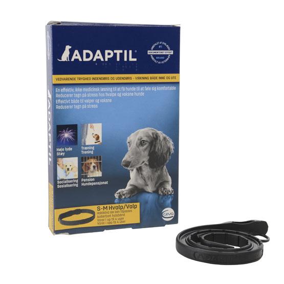 Billede af DAP halsbånd til hund, Adaptil