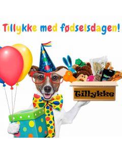 Giv din hund en lækker fødselsdagsgave