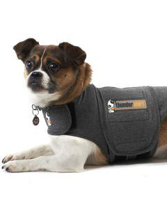 Thundershirt, Grå til hunde