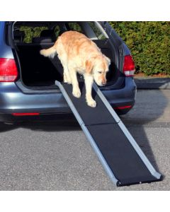 Rampe til bilen