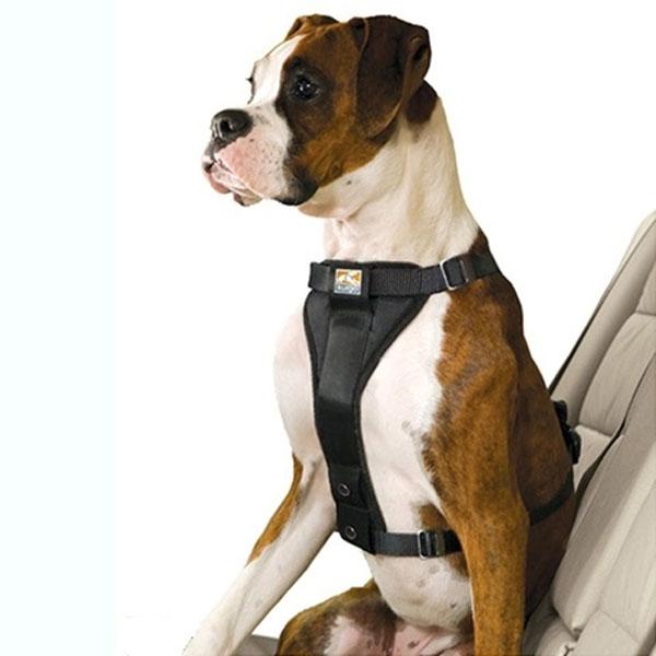 Kurgo Tru-Fit Smart sikkerhedssele