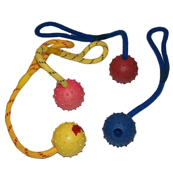 Image of   Gummibold med reb til hund