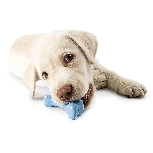 Bidelegetøj til hunde