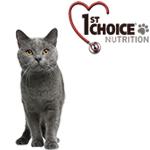 1st Choice kattefoder