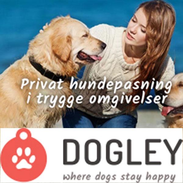 Dogley - Privat hundepasning