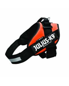 Julius K9 IDC Hundesele-Baby 1-Orange